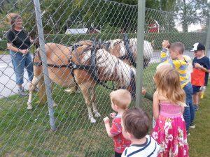 Britta Hessle var ute på promenad med sina hästar och vi fick hälsa på dom.