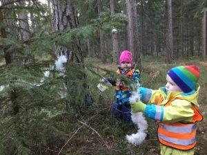 Vi samlas under stora granen där vi samtalar om vilka djur som varit med  och vad vi gjort i skogen. Barnen får i uppdrag att klä en liten gran ... 63cc082fa7e5c