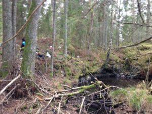 Fikastopp i skogen för 3-4-5-6. Under tiden tittar vi på olika bergarter.